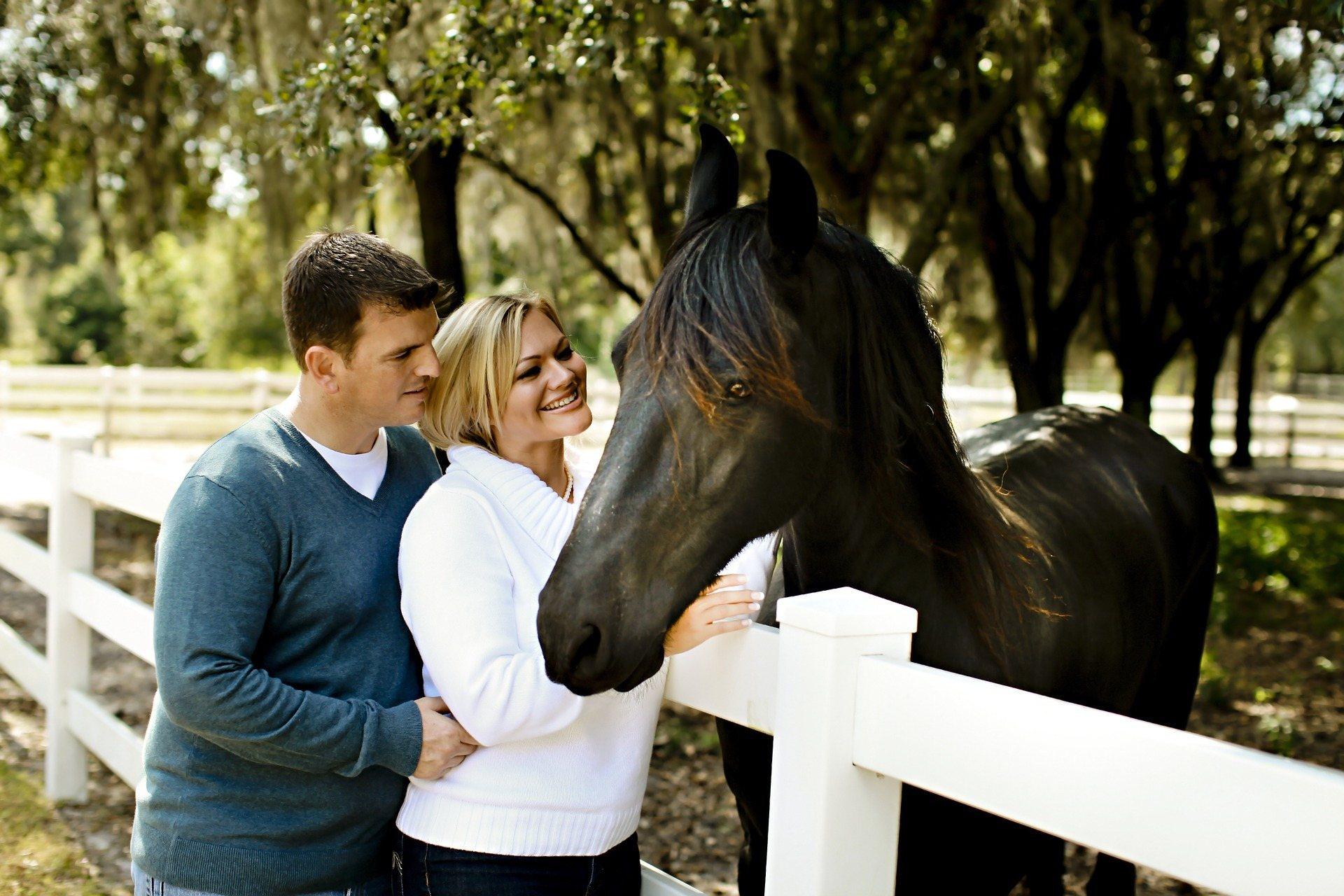pferdeunterstützte Therapien