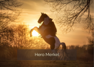 Hero Merkel
