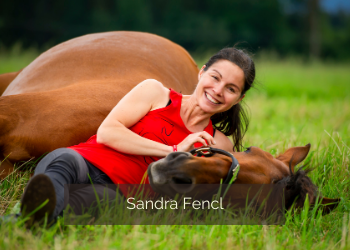Sandra Fencl