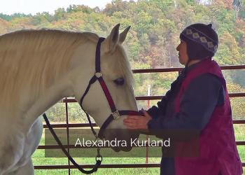 Alexandra Kurland Clickertraining mit Pferden