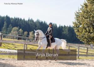 Besser galoppieren mit Anja Beran
